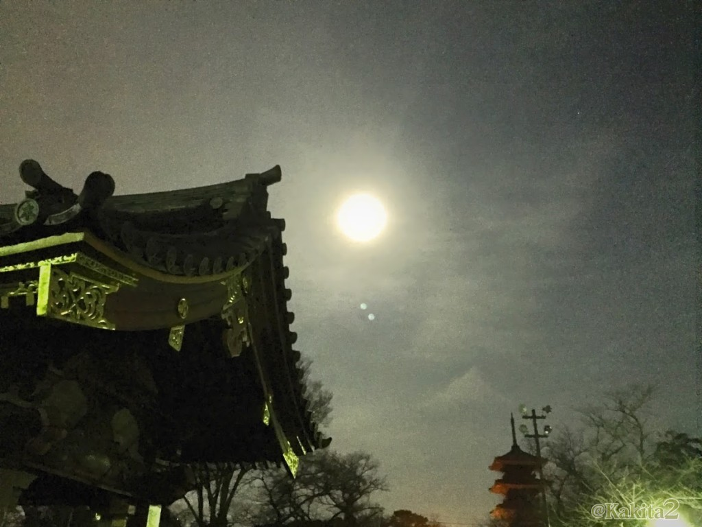 本門寺の満月